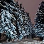 A karácsony a magyarok kedvenc ünnepe
