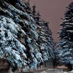 400 ezren vásároltak karácsonyi ajándékot az interneten